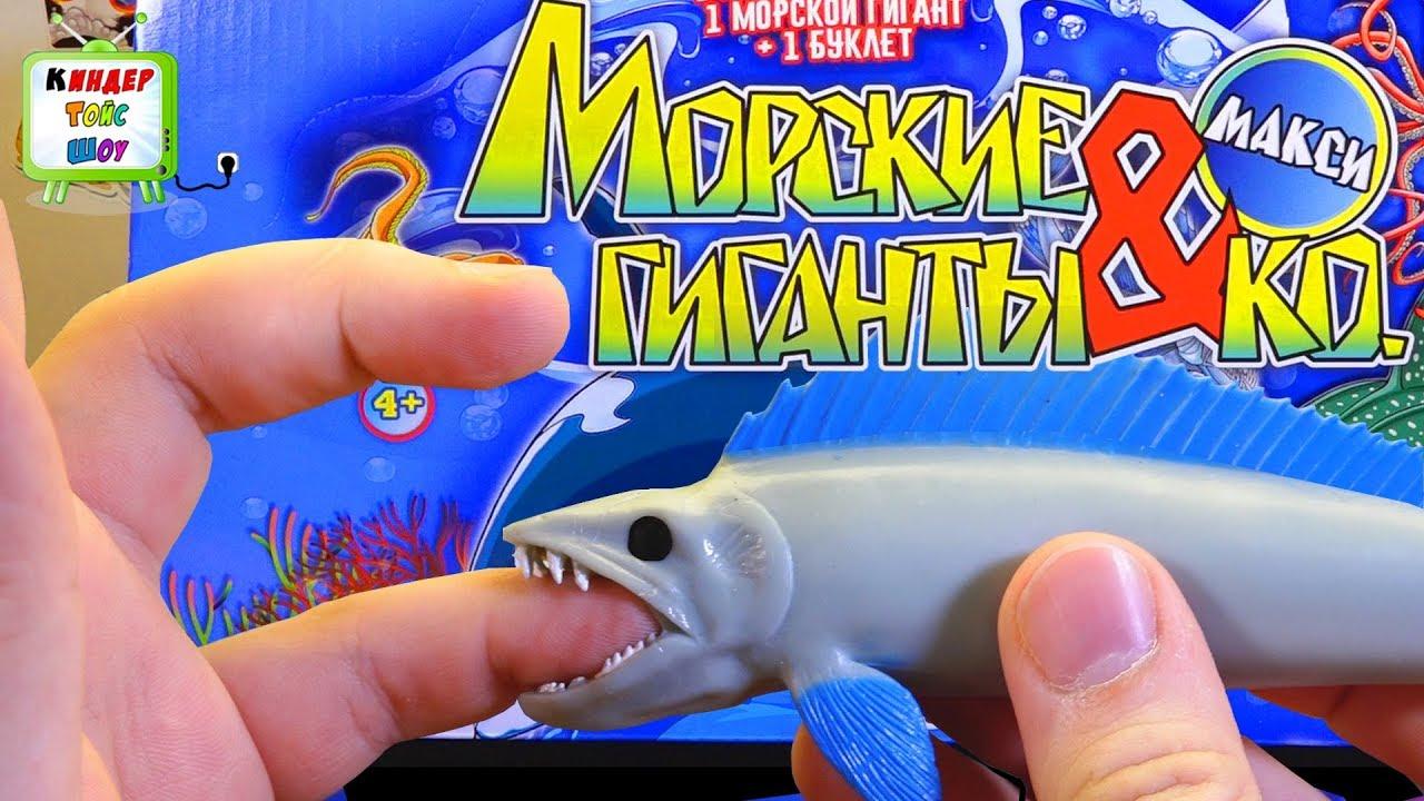 Мертвая рыба во сне предвещает испытания и горести. Купить рыбок аквариумных четыре штуки и взять их в рот якобы чтоб выжили и потом.