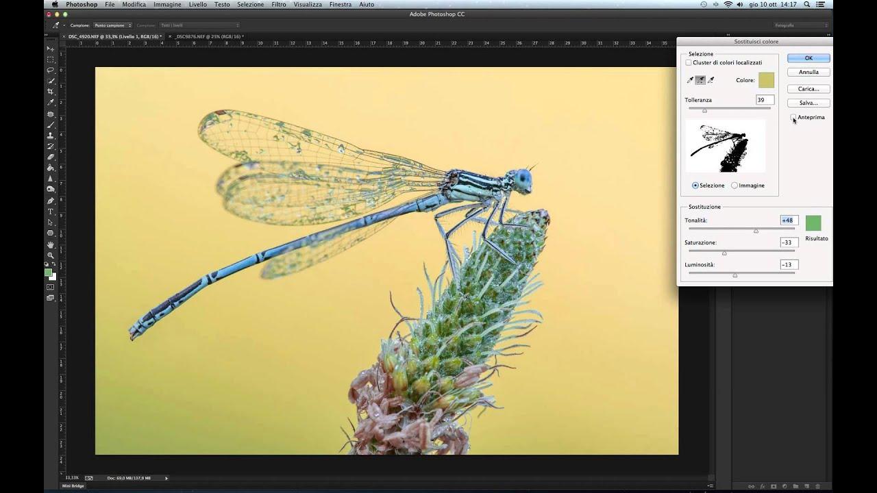 Colorare sfondo photoshop cs6