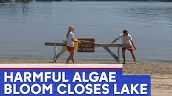 People warned to stay out of Lake Hopatcong in New Jersey
