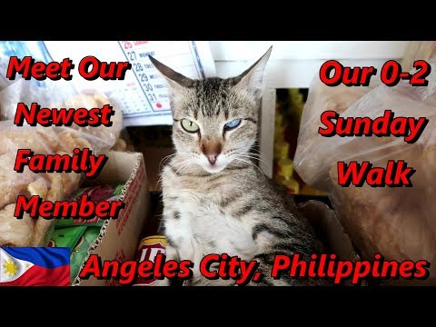 Welcome Our Newest Family Member & Our 0-2 Sunday Walk : Angeles City, Philippines from YouTube · Duration:  19 minutes 38 seconds