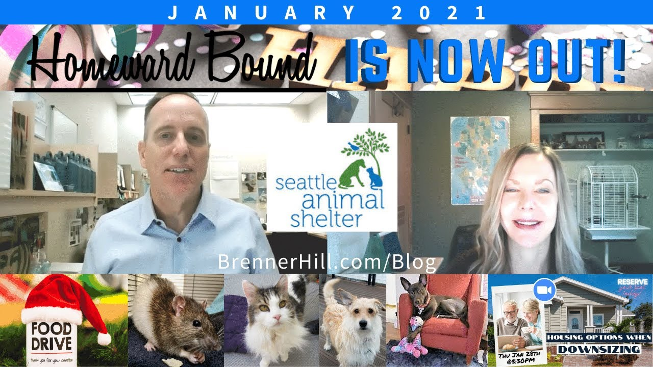 NW Seattle Newsletter | January 2021
