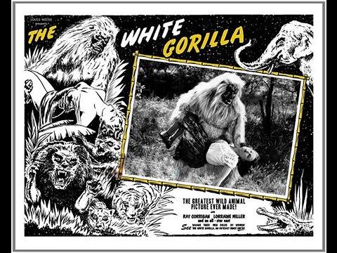 Creep Theater presents The White Gorilla s11e4
