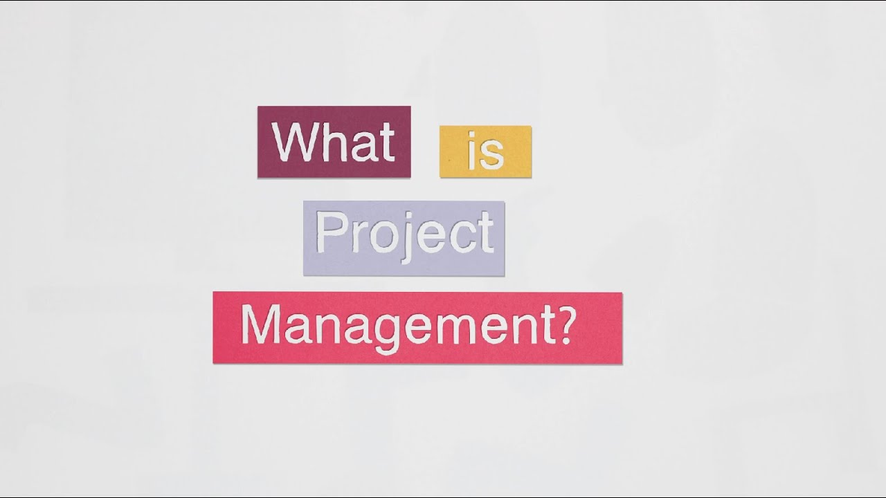 What is project management? | APM