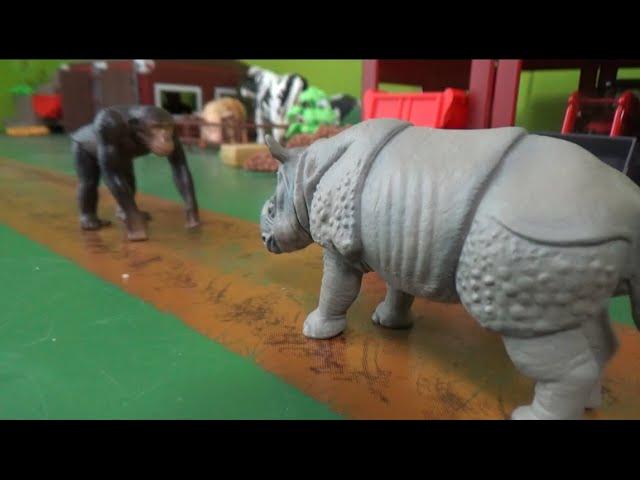 침팬지 vs 코뿔소 동물 대결 Chimpanzee vs Rhino Animal battle