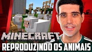 Minecraft 1.14  #34 - Reformando a Fazenda e Reproduzindo os Animais