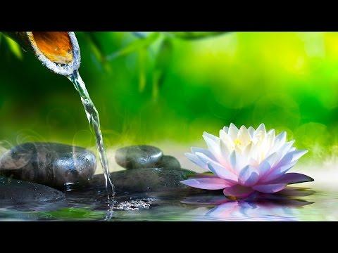 Musica Relajante Zen | Música de Relajacion y Meditación | Música para Relajarse y Meditar