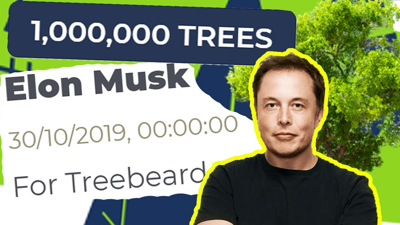 Why did Elon Musk just buy a million trees?