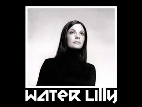 Water Lilly - Tanlges of Wires