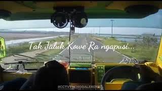 Download lagu 100 Cocok buat Story WA Demi Kowe MP3