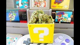 LIVE 🔴 Video Games & Smoking Weed 💀 Fortnite & random games  ✅ Join me 👑 KingBong 420 💚