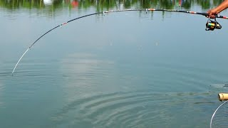 Big Fishing Videos By Babu Using Rod And Reel In Village Pond