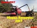 Уборка Кукурузы 2017 Palesse Gs12A1