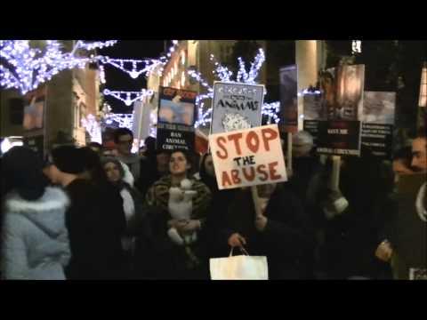 Animal Circus Ban Protest (12-12-2012)
