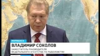 На совещании в Мурманске обсудили - как наполнить российский рынок рыбой