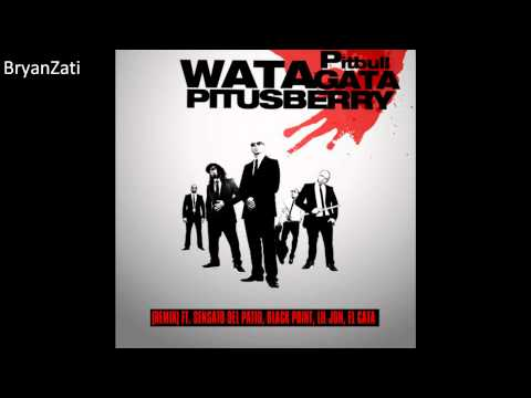 Watagatapitusberry - Pitbull, Lil Jon, Sensato Del Patio, Black Point ft El Cata