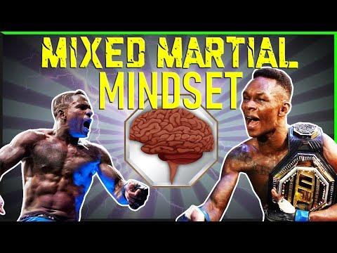 Mixed Martial Mindset #1 UFC Bellator Recap MSG MAYHEM Epstein Adesanya And More!