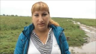 Затопило зоопарк в Борисовке