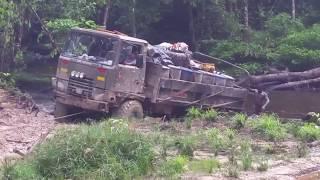Guyana rainforest and trails