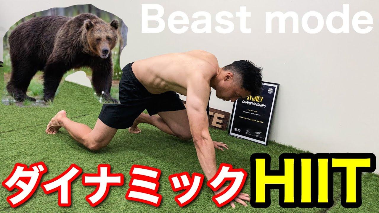 【ダイナミックHIIT】動物の動きを真似したHIITで、痩せるだけじゃなく、美しい、しなやかな体を作る!!