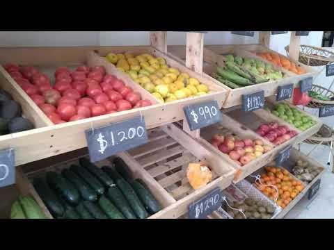 LACARRETTA VIDEO01 V1 1