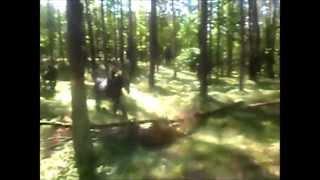 Skoki w lesie - Ataman