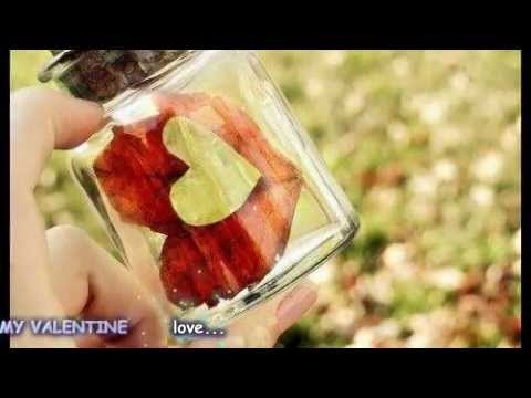 My Valentine - Martina Mcbride with lyrics