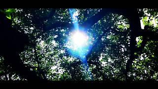 "Gambar cover APPLE MEETS BAZOOKA ""The Light"" MV"