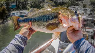 How To Catch GIANT Bass **Day on the Water**