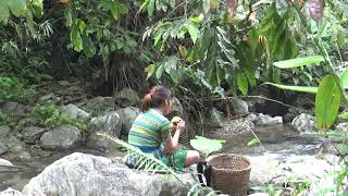 Primitive Life - Smart Girl Find Food meet Fruit In The Forest To Survival - How To Survival Solo