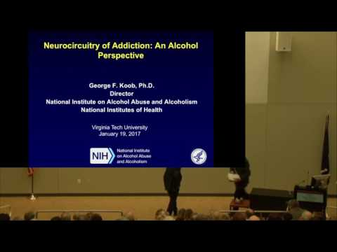 Neurocircuitry of Addiction: An Alcohol Perspective