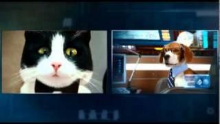 Como Cães e Gatos 2 - Comercial de TV 2