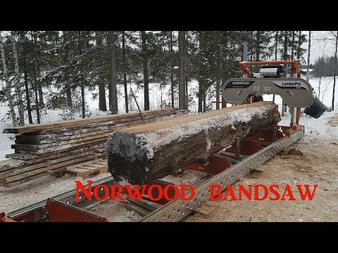 Our new investmet, Norwood bandsaw mill