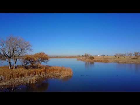 DJI Mavic Pro Wildlife Edition - Rocky Mountain Arsenal near Denver, CO