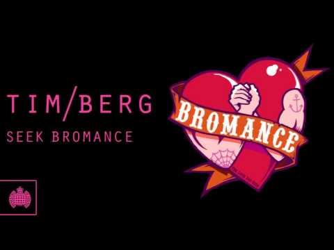 Tim Berg - 'Seek Bromance' (Avicii's Arena Mix)