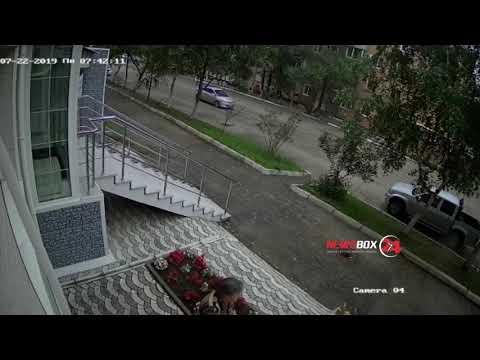 Пожилая вандалистка снова совершила налет на  клумбу в Дальнереченске