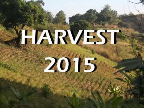 Harvest 2015 - Solar Lights for Malawi