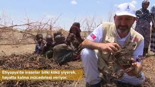 Etiyopya'da Yaşam