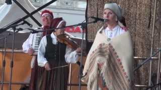 Dziesmu svētki 2013 Vērmanes dārza vidējā skatuvē 5.07.2013 - 00074