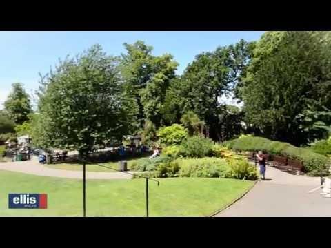 Golders Green video