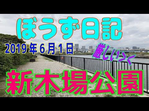 ぼうず日記20(新木場公園)※2019年5月31日)