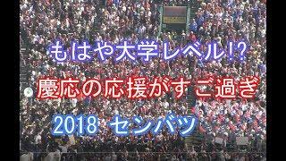 【エグ過ぎるダッシュ慶応の猛攻】慶応  2018 センバツ ブラバン甲子園 高校野球応援歌 吹奏楽 チアリーダー