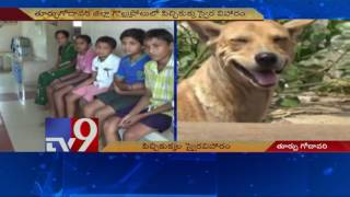 Mad dog on biting spree in East Godavari village - TV9