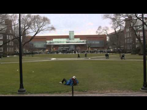 HARLEM SHAKE - BROOKLYN COLLEGE
