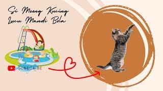 Lagu Anak Indonesia Lagu Anak Si Meong Kucing Lucu Mandi Bola