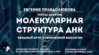 Евгения Правдолюбова: Вводный курс современной биологии. Третье занятие: молекулярная структура ДНК