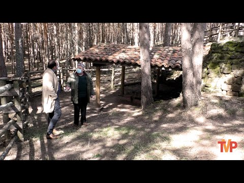 Entrevista a Santiago Abad de la Cabaña Real de Carreteros en el Horno de Pez de Quintanar