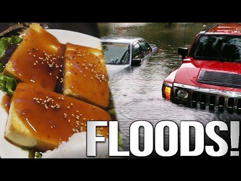Full Day of Vegan Eating & MASSIVE San Diego Floods!