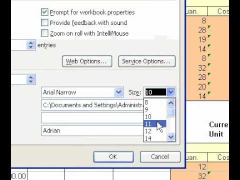 What is the standard font size in microsoft format?
