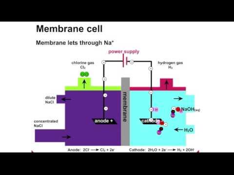 Chlor-Alkali Process Animation
