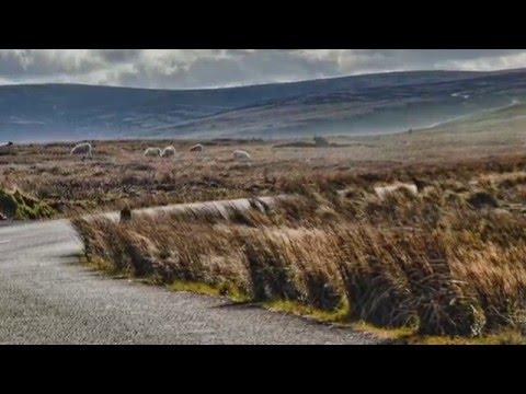 Ireland, Glendalough, Wicklow National Park